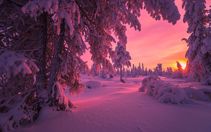 Sunsets in Lapland